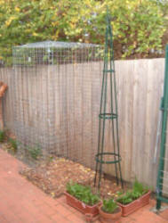 Cat Enclosures - Cat Cages - Outside Cat Runs