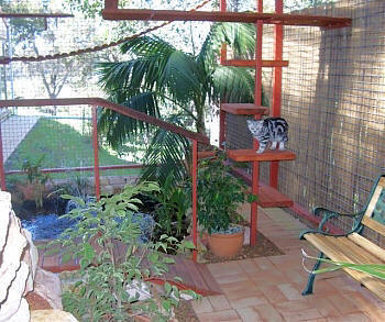 Cat Enclosure Cat Run Cat Proof Fences