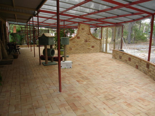 Gallery For Outdoor Cat Enclosures