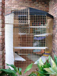 Cat Enclosure Cat Run - Outdoor