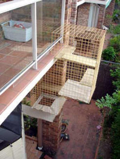 Cat Enclosure balcony